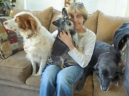 All Kinds Of Wrong Animal Abuse Lynn Jones Reno-Tahoe International - 5524058880