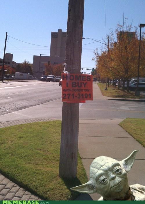 buy homes Memes star wars yoda - 5524488192