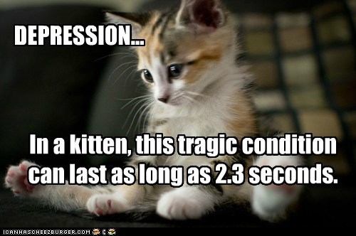DEPRESSION... In a kitten, this tragic condition can last as long as 2.3 seconds.