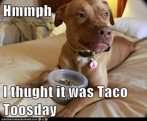 Hmmph I thught it was Taco Toosday