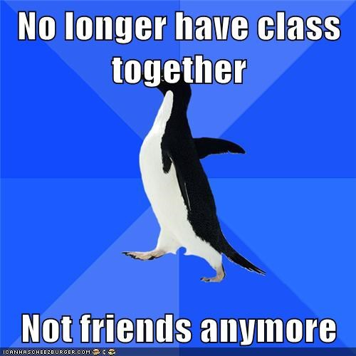 class,friends,nope,school,socially awkward penguin