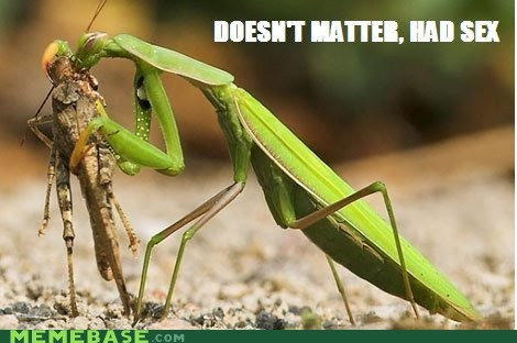 animals,doesnt matter,had sex,mantis,Memes