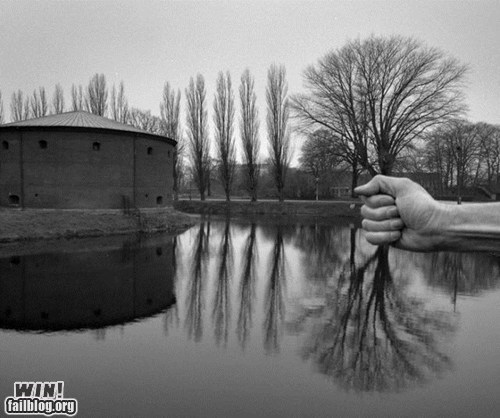 art,clever,grip,hand,perspective,photography,tree