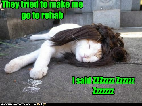 They tried to make me go to rehab I said ZZZzzzz Zzzzzz Zzzzzzz