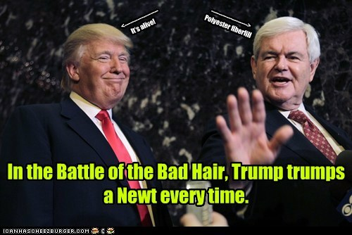 donald trump,newt gingrich,political pictures