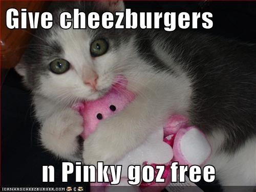 Cheezburger Image 5528946688