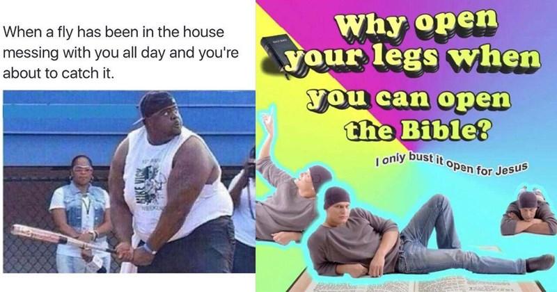 hilarious FRIDAY random memes funny pics funny memes happy friday doggo memes for the weekend - 5529093