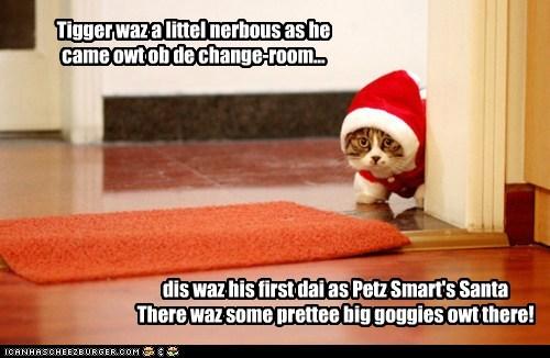 Tigger waz a littel nerbous as he came owt ob de change-room... dis waz his first dai as Petz Smart's Santa There waz some prettee big goggies owt there!