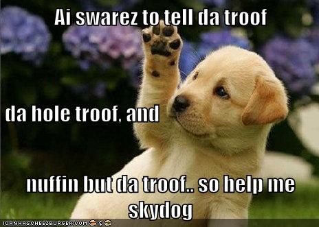 Ai swarez to tell da troof da hole troof, and nuffin but da troof.. so help me skydog