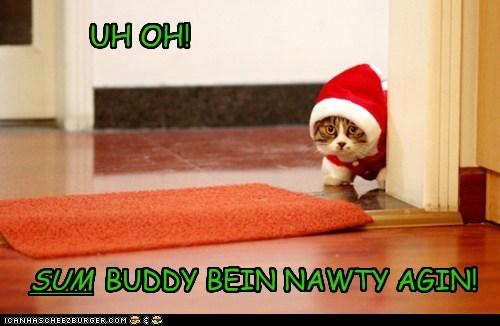 UH OH! BUDDY BEIN NAWTY AGIN! SUM