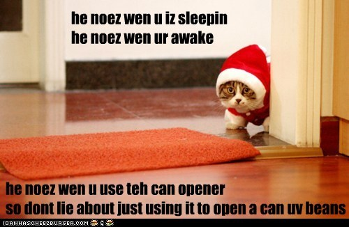he noez wen u use teh can opener so dont lie about just using it to open a can uv beans he noez wen u iz sleepinhe noez wen ur awake