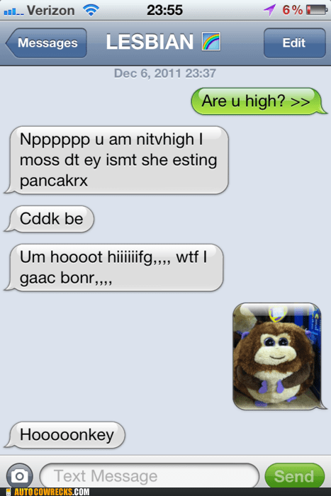 drunk drunk text high high text monkey