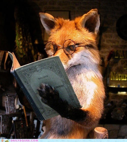 acting like animals,fox,french,literature,lolwut,molière,novel,posing,reading,shoop