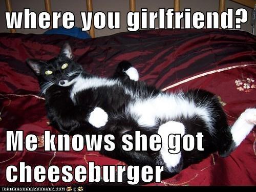 Cheezburger Image 5531399424