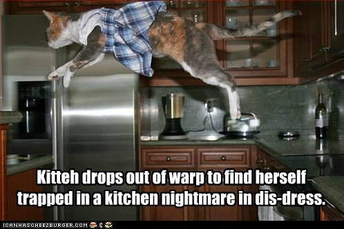 Kitteh drops out of warp to find herself trapped in a kitchen nightmare in dis-dress.