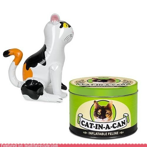 can cat inflatable pet plastic toy - 5531709184