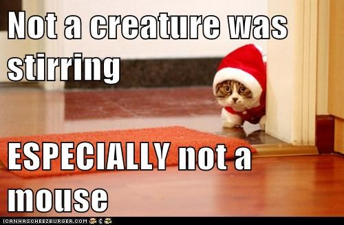 caption captioned cat christmas costume creature dressed up especially mouse not santa stirring the night before christmas