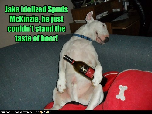 Jake idolized Spuds McKinzie, he just couldn't stand the taste of beer!