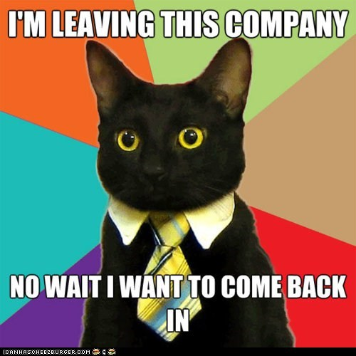 Business Cat,in and out,indecision,memecats,Memes,quit,quitting