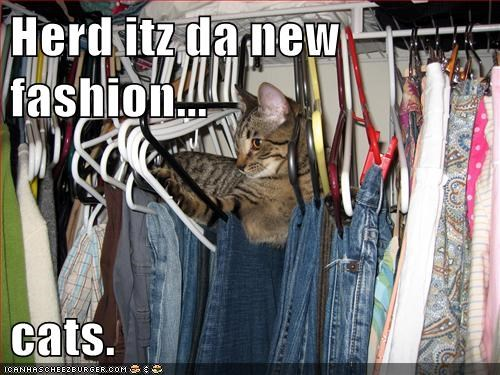 Herd itz da new fashion...  cats.