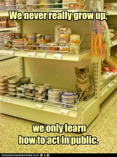 behavior canned food caption captioned Cats food grow up mature public stores - 5535124480