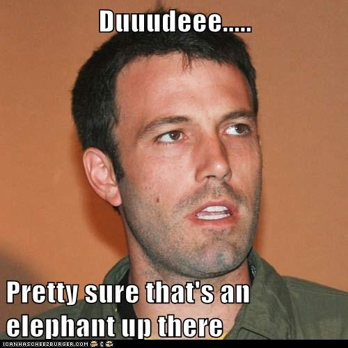 actors ben afleck elephant elephant in the room idgi roflrazzi - 5535193856