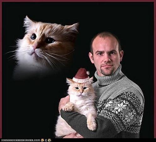 cheezburger sites christmas fruitcakes holidays ugs - 5535251968