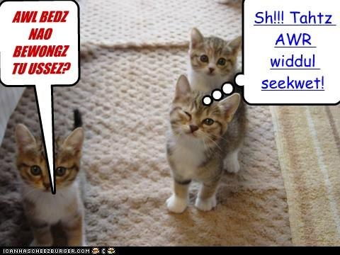 AWL BEDZ NAO BEWONGZ TU USSEZ? Cleverness Here Cleverness Here Sh!!! Tahtz AWR widdul seekwet!