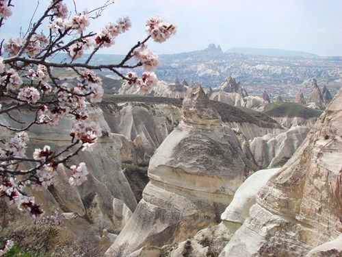 asia cherry blossoms Eurasia europe geographic formation getaways Hall of Fame rock Turkey - 5535450624