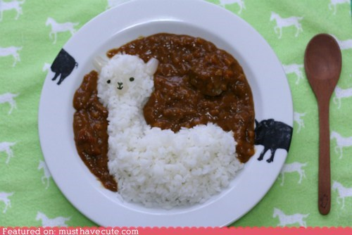 alpaca,bowl,chili,epicute,face,rice