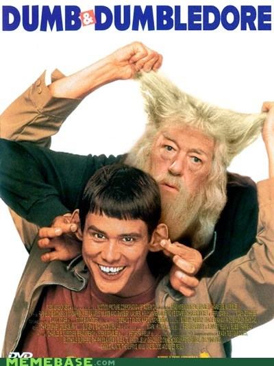 dumb,dumber,dumbledore,Farrelly Brothers,Harry Potter,Memes