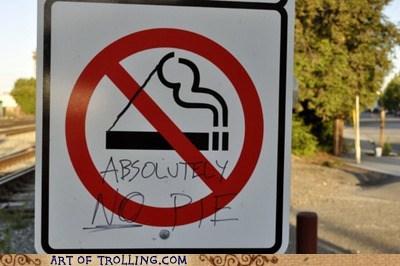 IRL no pie no smoking pie - 5538122496