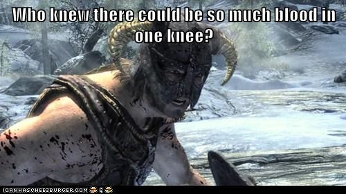 arrow in the knee,Blood,dovahkiin,Skyrim,the elder scrolls