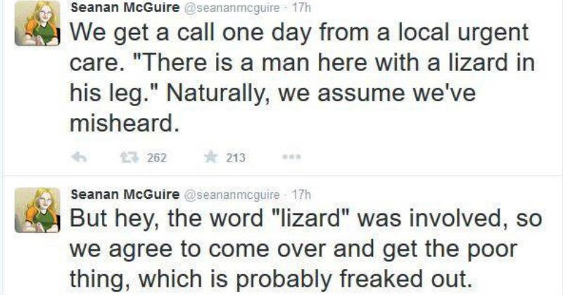 ouch scary twitter wtf reptile gross painful live tweet ridiculous lizard - 5539333