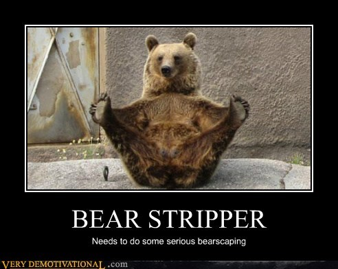 bear,hilarious,shaving,stripper