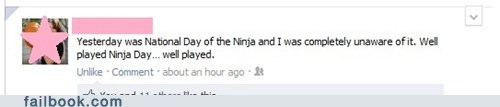 holiday,iseewhatyoudidthere,ninja