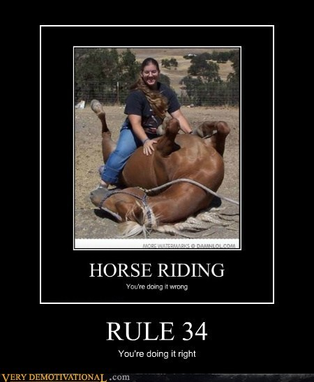 doing it wrong,hilarious,horse,lady,Rule 34