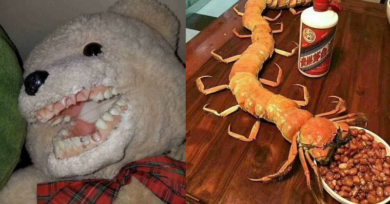 pics scary images gross cursed images funny weird cursed clowns teeth noodles beans food fish toothpaste burgers - 5539845