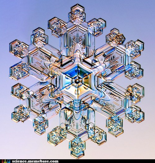 crystallization,growth,ice,Physical Sciences,snowflake