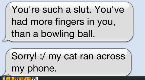 bowling,bowling ball,cat,insult,loose