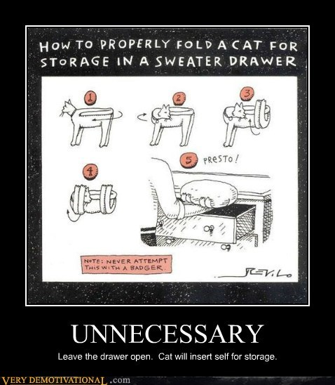 cat folding hilarious unecessary wtf - 5540145664