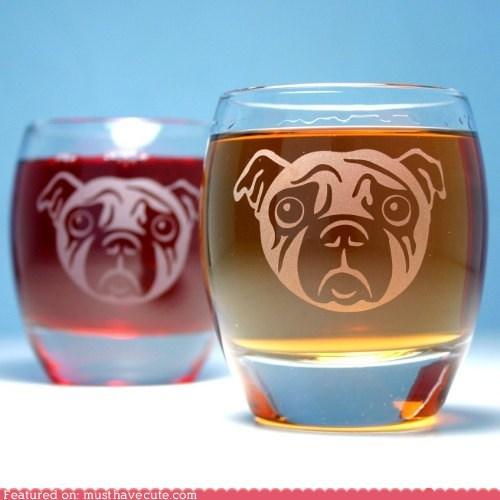alcohol booze dogs drinking etched glass pug - 5540405504