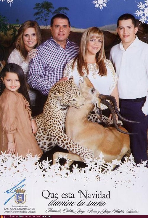 card family photo holiday hunting taxidermy wtf - 5540422400