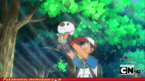 anime ash lion king oshawott the circle of life tv-movies - 5540795648