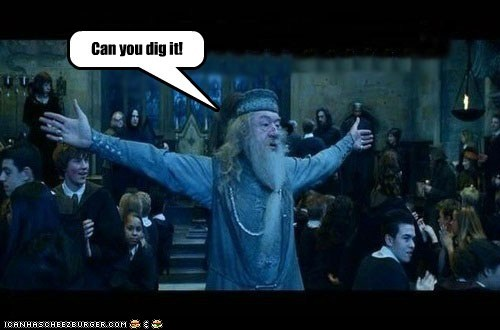 can you dig it,dumbledore,Harry Potter,Michael Gambon,warriors