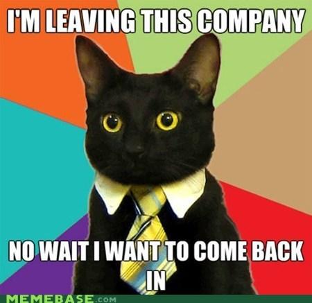 Business Cat Cats come back company door go out subpar - 5541075968