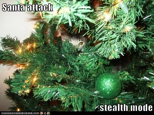 best of the week cat christmas christmas tree Hall of Fame I Can Has Cheezburger kitten santa santa attack stealth stealthy - 5541714944