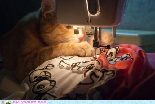 acting like animals,bad idea,cat,favor,frustrated,Hall of Fame,inseam,regret,sewing,sewing machine
