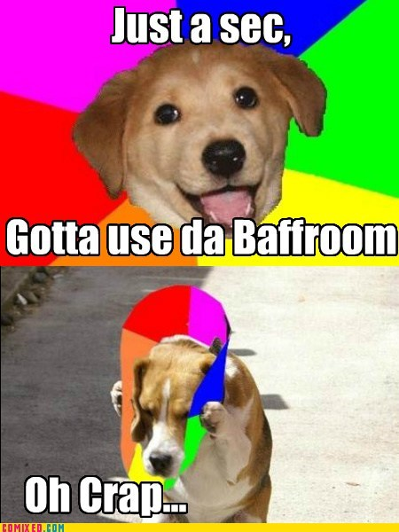 animal crap dogs meme animals the internets - 5541874944