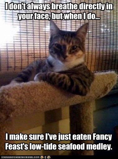 bad breath breathing cat food face fancy feast food gross the most interesting man in the world - 5542051584